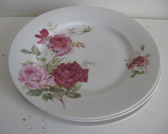 Three Beautiful Rose Pattern Breakfast Lunch Dinner Everyday Vintage Plates Farmhouse Romantic Home Style
