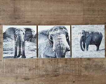 Elephant Wall Art Set of 3 (8 x 8 inch Wood-Cradled Panels) Black and White Art - Animal Nursery Home Decor - Elephant Lover
