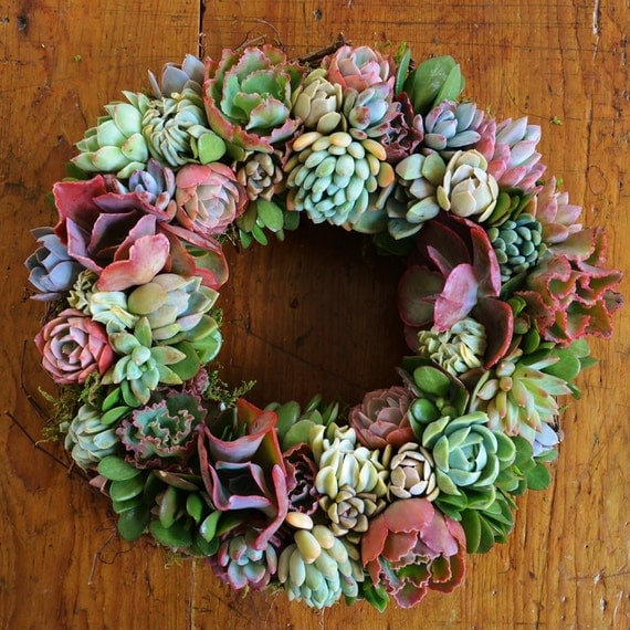 "Succulent Angelique wreath, Patio Garden Wreath, 14"" wreath, decorating with plants, jewel tone wreath, succulent decor, living wreath"