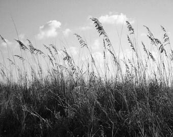 Beach Decor, Black and White Photo Sand Dunes, Large Format Print