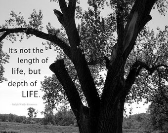 Inspirational Quotes, Quotable Art Black and White Photography Infinite Wisdom Tree