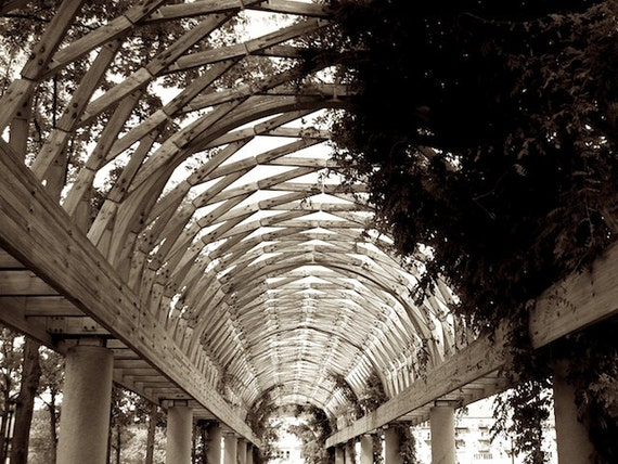 Digital Photography, Sepia Photography, Arbor Photo, Boston Photography, Foyer Wall Decor