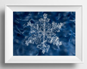 Real Snowflake Print - Ice Crystal - Real Snowflakes - Winter - Macro Photo - 003