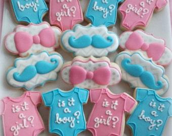 Baby shower Cookies - baby cookies - gender reveal cookies - 1 dozen decorated cookie favors