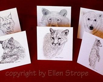 Wildlife Gift Cards, Drawings, Bears, Cougar, Lynx, Polar Bear, Blank Gift Cards