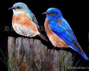 PRINTS, Blue Birds, 5 X 7, bird decor, blue bird decor, home decor, Ellen Strope, castteam, bird art, home sweet home, art prints