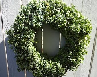 Hydrangea Wreath  Dried Wreath  Natural Wreath  Shabby Chic  Door Wreath  Home Decor  Green Hydrangeas  Wall Decor
