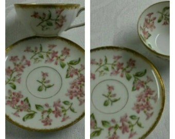 Limoges T&V Hand Painted Demi Cup and Saucer circa 1892-1907   898