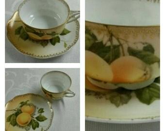 Rosenthal cup & saucer called Madeleine circa 1898-1906-  393