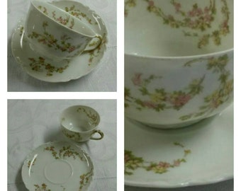 Limoges cup & saucer by Haviland titled Norma circa 1894-1930-  DS