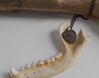 Raccoon Jaw necklace