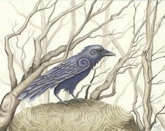 Celtic Raven Print