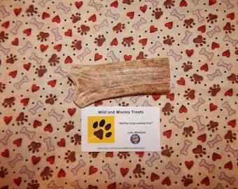 "Organic Medium Elk Antler Dog Chew ""Made in Montana"" (Lot 8047)"