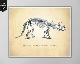 Triceratops Dinosaur Art Print, Dinosaur Natural History Poster, Natural History Dinosaur Print, Triceratops Art Print, Triceratops Print