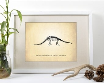 Diplodocus Dinosaur Art Print, Dinosaur Natural History Poster, Natural History Dinosaur Print, Dinosaur Diplodocus Poster, Dinosaur Print
