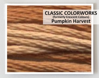 PUMPKIN HARVEST  : Classic Colorworks hand-dyed embroidery floss cross stitch thread at thecottageneedle.com