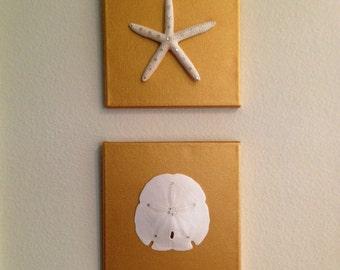 Beautiful Starfish and Sand Dollar Duo Each on a Gold Canvas - Nautical Decor - Tropical Decor - Nautical Christmas Decor - Beachy Decor