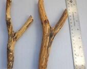 2 Mesquite Wood Pegs Rustic Hat Rack Coat Hanger forked Branch Tool hanger