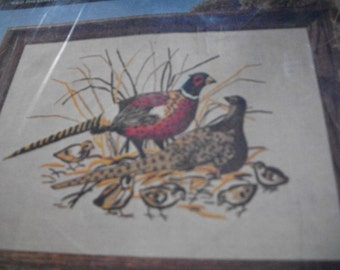 Wild Pheasants Crewel Embroidery Kit: Comes with Fabric, Yarn, Needle & Directions
