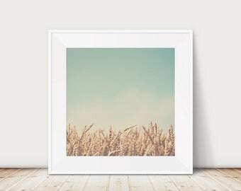 wheat photograph wheat field print farm house decor country decor rustic decor nature photography mint green gold decor