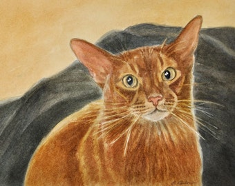 Abyssinian Cat Art, Abyssinian Cat Print, Aby Cat Art, Cat Portrait, Cat Watercolor Print, Abyssinian Cat Watercolor by P. Tarlow