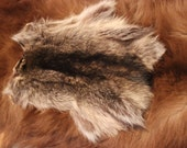 More Raccoon Back Hide Fur Pieces- Pelts for crafting, sewing, displays