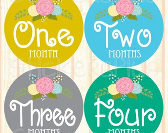 Precut Monthly Baby Girl Stickers Month Roses Floral Flower Stickers Milestone Bodysuit Nursery Decor Baby Age Stickers Photo Prop