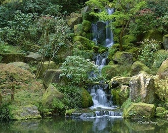 Tranquil Waterfall Photography, Nature Photography, Garden Photography, Waterfall Photography, travel Photography, Green