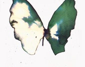 super end of year SALE dark green and white gold butterfly. original watercolour painting.