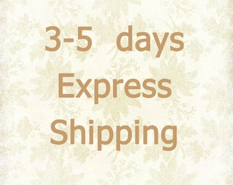 3-5 days Express Mail /  Urgent Shipping for Customers in US, Canada, UK, Germany / Fast