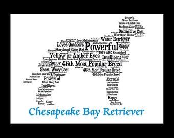 Chesapeake Bay Retriever Art, Chesapeake Bay Retriever, Chesapeake Bay Retriever Print, Chesapeake Bay Retriever Gift