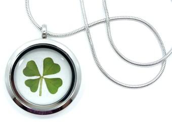 Real Four Leaf Clover Pendant Necklace - 4 leaf clover, lucky clover, shamrock necklace