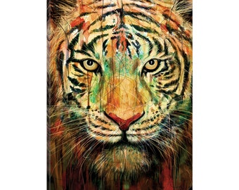 iCanvas Tiger II Gallery Wrapped Canvas Art Print by Nicebleed