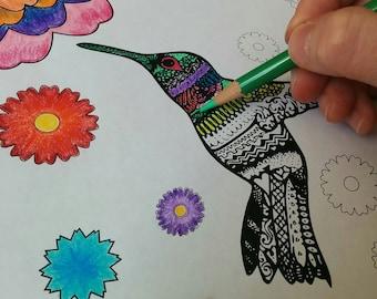 Printable Hummingbird Coloring Page