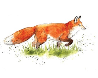 Giclee Fine Art Print: Red Fox Watercolour Painting