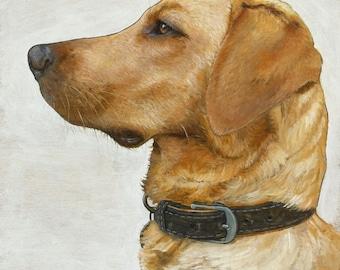 Labrador Original Oil Painting