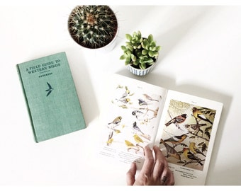 Vintage Bird Guide Books | A Field Guide to Western Birds | Discovering Sierra Birds
