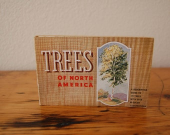 Vintage Trees Of North America Book Vintage Trees You Want To Know Book Whitman Publishing Little Tree Book from The Eclectic Interior