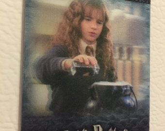 harry potter fridge magnet - hermione and the polyjuice potion