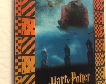 harry potter fridge magnet - special edition quidditch harry