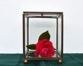 Vintage Glass & Brass Display Box