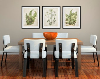 Fern Prints, Botanical Prints, Queen Annes Lace, Nature Photography, Nature Art, Minimal Green Art Woodsy Flora, Set of 3 Fine Art Prints
