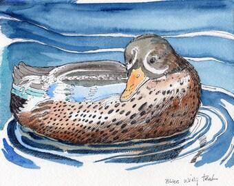 Watercolor Painting-Bird Art-Duck and Water Art-Original by Diann