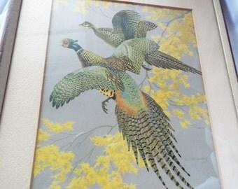 Pheasant Print Walter Joseph Wilwerding Male Female Pair Matted Framed
