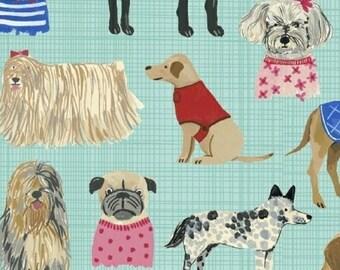 Windham - Carolyn Gavin - Hotdogs & Cool Cats - Dogs - Aqua