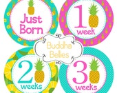 Newborn and Monthly Baby Stickers Pineapples Hawaii Tropical Months 1-12 plus Newborn Set Hawaiian Baby Girl Save on Shipping