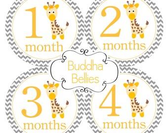 READY TO SHIP Monthly Baby Stickers Neutral Giraffe Design Giraffe Month Decals Bodysuit Stickers Giraffe Nursery Baby Shower Gift N157