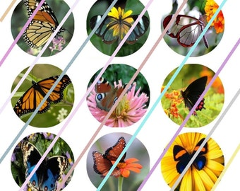 "Butterfly and Flowers 1"" Bottle Cap Image 4x6 Digital Collage Sheet 2 Instant Download"