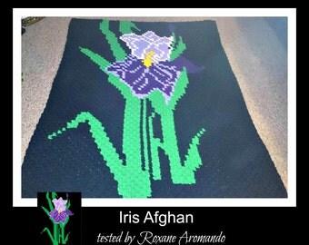 C2C Graph, Iris Afghan, C2C Graph, & Written Word Chart