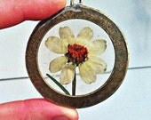 Preserved Zinnia Flower, Real Flower Pendant Necklace, bronze chain.